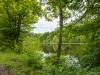 auf den Teich geblickt
